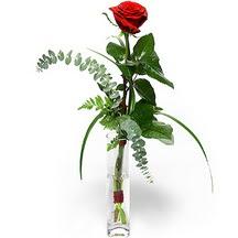 Mardin 14 şubat sevgililer günü çiçek  Sana deger veriyorum bir adet gül cam yada mika vazoda
