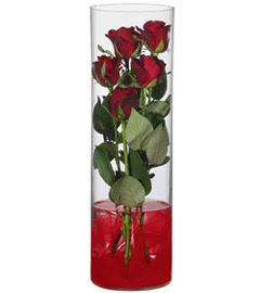 cam içerisinde 7 adet kirmizi gül  Mardin çiçekçiler