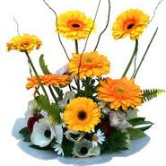 camda gerbera ve mis kokulu kir çiçekleri  Mardin çiçekçi telefonları