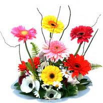 Mardin hediye çiçek yolla  camda gerbera ve mis kokulu kir çiçekleri