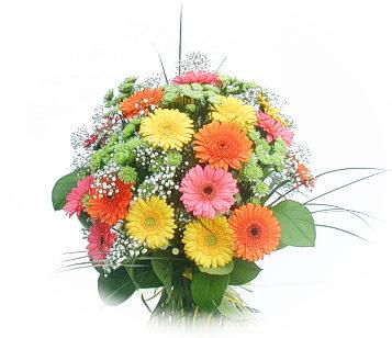13 adet gerbera çiçegi buketi  Mardin online çiçek gönderme sipariş
