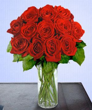 Anneme 12 adet cam içerisinde kirmizi gül  Mardin çiçek siparişi sitesi