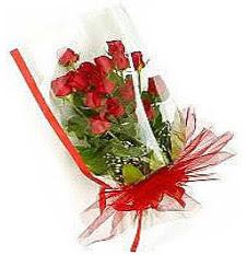 13 adet kirmizi gül buketi sevilenlere  Mardin çiçek siparişi vermek