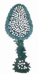 Mardin online çiçek gönderme sipariş  dügün açilis çiçekleri  Mardin güvenli kaliteli hızlı çiçek