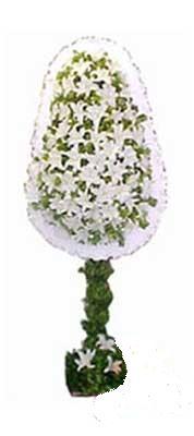Mardin çiçek siparişi sitesi  nikah , dügün , açilis çiçek modeli  Mardin online çiçek gönderme sipariş
