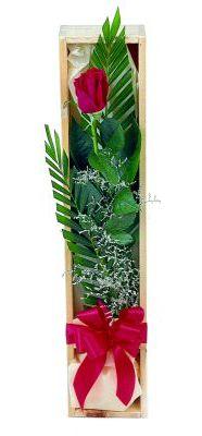 1 adet kutuda kirmizi gül  Mardin çiçek gönderme sitemiz güvenlidir