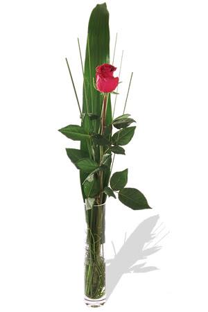 1 adet cam vazo içerisinde kirmizi gül  Mardin çiçek , çiçekçi , çiçekçilik
