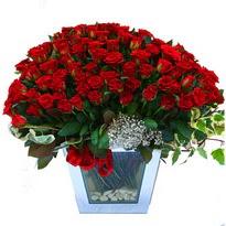Mardin çiçekçiler   101 adet kirmizi gül aranjmani