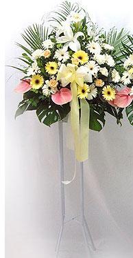 Mardin online çiçek gönderme sipariş   perförje çiçegi dügün çiçekleri