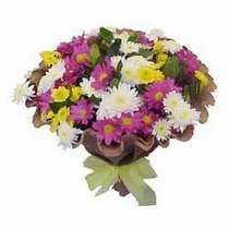Mardin çiçekçi telefonları  Mevsim kir çiçegi demeti