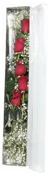 Mardin çiçek siparişi sitesi   5 adet gülden kutu güller
