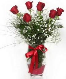 7 adet gülden cam içerisinde güller  Mardin 14 şubat sevgililer günü çiçek