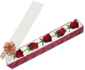 Mardin internetten çiçek satışı  kutu içerisinde 5 adet kirmizi gül