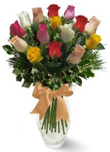 15 adet vazoda renkli gül  Mardin internetten çiçek satışı