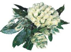 Mardin internetten çiçek siparişi  9 Beyaz gül Özel kisiler için