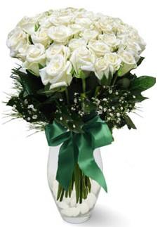 19 adet essiz kalitede beyaz gül  Mardin çiçekçiler