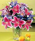 Mardin çiçek mağazası , çiçekçi adresleri  Sevgi bahçesi Özel  bir tercih