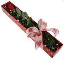 Tek kirmizi gül kutu içerisinde  Mardin güvenli kaliteli hızlı çiçek
