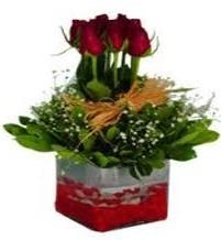 Mardin çiçek gönderme  7 adet mika yada cam vazoda gül tanzimi