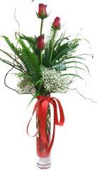 Mardin çiçek siparişi sitesi  3 adet kirmizi gül vazo içerisinde