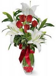 Mardin çiçek siparişi vermek  5 adet kirmizi gül ve 3 kandil kazablanka