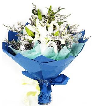Mardin anneler günü çiçek yolla  4 adet dal kazablankadan görsel buket
