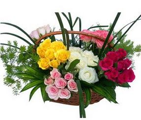 Mardin ucuz çiçek gönder  35 adet rengarenk güllerden sepet tanzimi