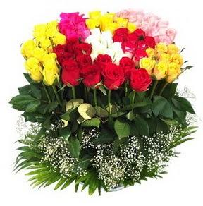 Mardin çiçek mağazası , çiçekçi adresleri  51 adet renkli güllerden aranjman tanzimi