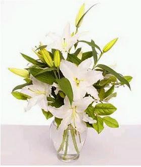 Mardin çiçek gönderme  2 dal cazablanca vazo çiçeği