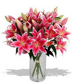 4 dal cazablanca görsel vazosu  Mardin çiçekçi mağazası