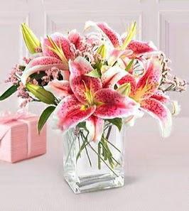 2 dal kazablanka görsel vazosu  Mardin çiçek siparişi sitesi