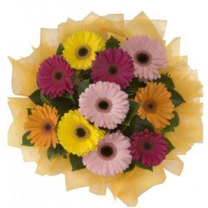 Mardin İnternetten çiçek siparişi  11 adet karışık gerbera çiçeği buketi