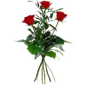 Mardin uluslararası çiçek gönderme  3 adet kırmızı gülden buket