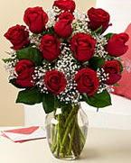 Sevgilime hediye 9 adet 1.ci kalite gül  Mardin anneler günü çiçek yolla