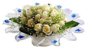 Mardin çiçek online çiçek siparişi  11 adet Beyaz güller özel cam tanzim