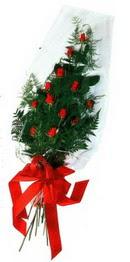 Mardin çiçek yolla  11 adet kirmizi gül saten kurdelali
