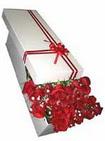 Mardin çiçekçi telefonları  11 adet 1.kalite magnum güller