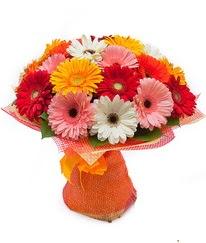 Renkli gerbera buketi  Mardin anneler günü çiçek yolla
