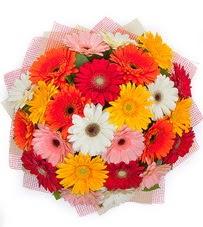 15 adet renkli gerbera buketi  Mardin yurtiçi ve yurtdışı çiçek siparişi