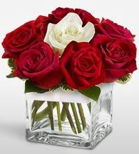 Tek aşkımsın çiçeği 8 kırmızı 1 beyaz gül  Mardin uluslararası çiçek gönderme