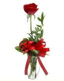 vazo içerisinde 1 adet kırmızı gül  Mardin çiçekçi telefonları