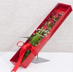 Kutu içerisinde 3 adet kırmızı gül  Mardin online çiçek gönderme sipariş
