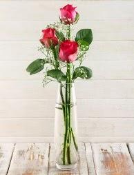 Cam içerisinde 3 kırmızı gül  Mardin çiçek satışı