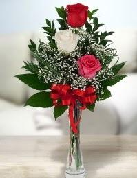 Camda 2 kırmızı 1 beyaz gül  Mardin ucuz çiçek gönder