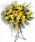 Mardin yurtiçi ve yurtdışı çiçek siparişi  Sari kazablanka Ferforje