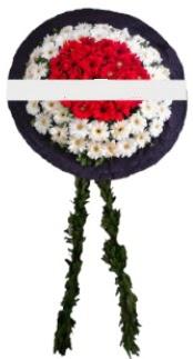 mozele çiçeği  Mardin hediye sevgilime hediye çiçek