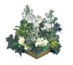 Mardin çiçek siparişi vermek  Beyaz sebboy ve gül aranjmani