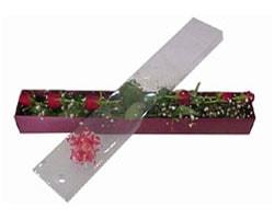 Mardin anneler günü çiçek yolla   6 adet kirmizi gül kutu içinde