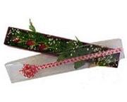 Mardin hediye çiçek yolla  3 adet gül.kutu yaldizlidir.