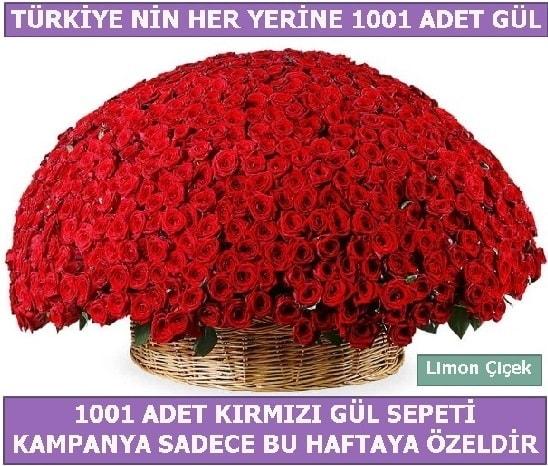 1001 Adet kırmızı gül Bu haftaya özel  Mardin İnternetten çiçek siparişi